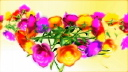 Royalty Free HD Video Clip of Rotating Cut Flowers