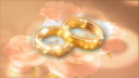 Royalty Free HD Video Clip of Rotating Wedding Rings Surrounded by Roses