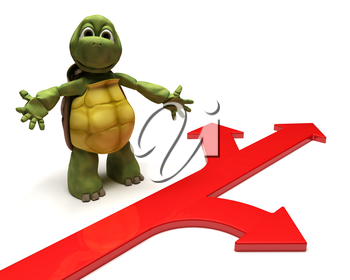 3D Render of a Tortoise with arrows