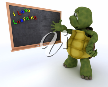 3D render of a tortoise with school chalk board
