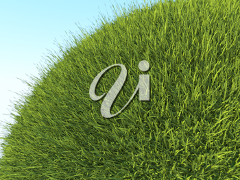 Green planet: close up of fresh grass and blue sky in summer