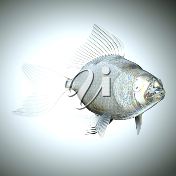 Glassy semitransparent fish with scales and fins. Large resolution