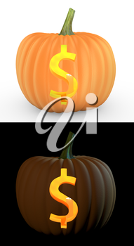 Dollar symbol carved on pumpkin jack lantern isolated on and white background