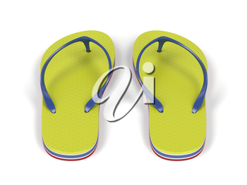 Pair of flip-flops on white background