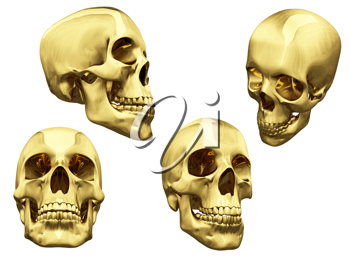 Royalty Free Clipart Image of Skulls