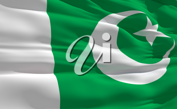 Royalty Free Clipart Image of the Flag of Pakistan