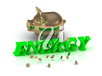 ENERGY- inscription of green letters and gold Piggy on white background