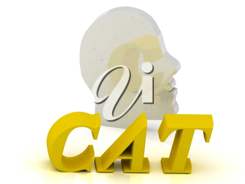 CAT- bright color letters and silver head mind on a white background
