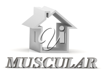 MUSCULAR- inscription of silver letters and white house on white background
