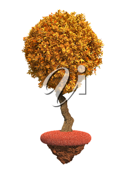 Autumn Decorative Tree with Spherical Krone on Red Grass Island Isolated on White Background.