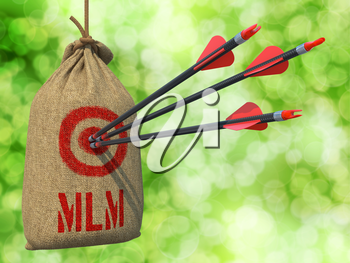 MLM - Three Arrows Hit in Red Target on a Hanging Sack on Natural Bokeh Background.