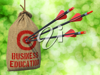 Business Education - Three Arrows Hit in Red Target on a Hanging Sack on Green Bokeh Background.