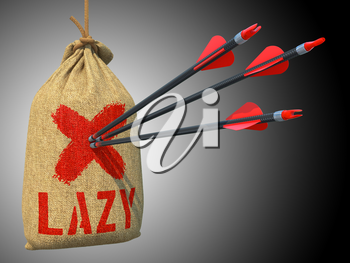 Lazy - Three Arrows Hit in Red Target on a Hanging Sack on Grey Background.