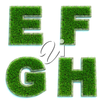 Letters E, F, G, H - Alphabet Set of Green Grass Lawn on White Background in 3d.