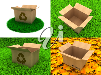 Set of Cardboard Open Boxes on The Grass and Autumn Leaves. 3d concept.
