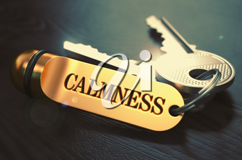 Calmness Concept. Keys with Golden Keyring on Black Wooden Table. Closeup View, Selective Focus, 3D Render. Toned Image.