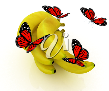 Red butterflys on a bananas on a white background