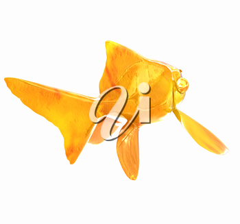 Gold fish. Isolation on a white background