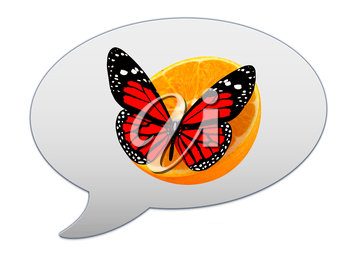 messenger window icon and Red butterflys on a half oranges