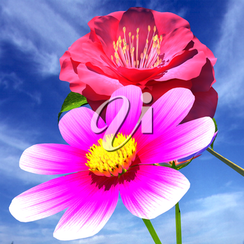 Beautiful Flower against the sky