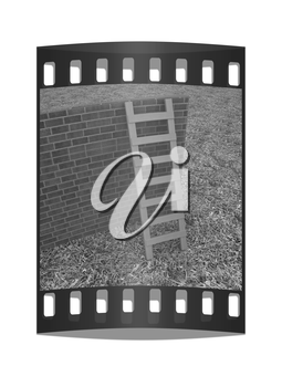 Ladder leans on brick wall on a green grass. The film strip