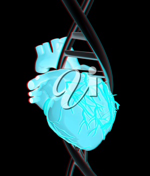 DNA and heart. 3d illustration. Anaglyph. View with red/cyan glasses to see in 3D.