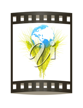 Yellow ears of wheat and Earth. Symbol that depicts prosperity, wealth and abundance. 3d render. Film strip.