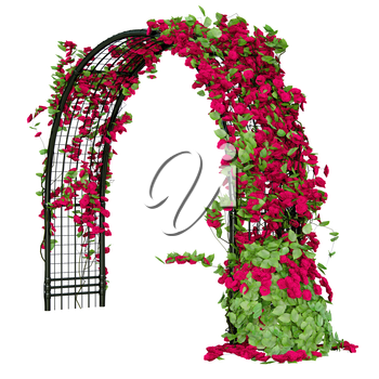 Arched pergola for the gardening purposes with roses and some leaves
