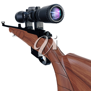 Back view of a hunting or sport rifle