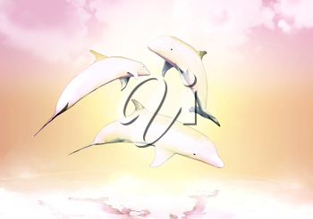 Cheerful game, the family of dolphins against a background of the sunset.