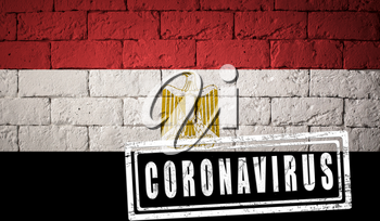 Flag of the Egypt with original proportions. stamped of Coronavirus. brick wall texture. Corona virus concept. On the verge of a COVID-19 or 2019-nCoV Pandemic.