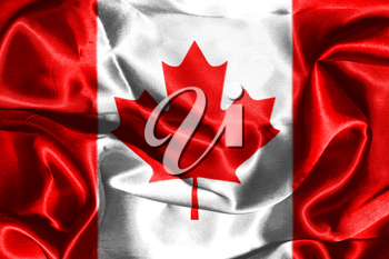 Canadian National Flag With Maple Leaf On It in Red And White Colors